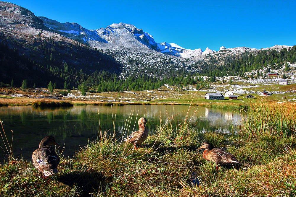 Furcia – Lago Colli Alti – Passo della Croce – Forcella di Crippes – Forcella di Sennes – Rifugio Biella – Lago di Braies