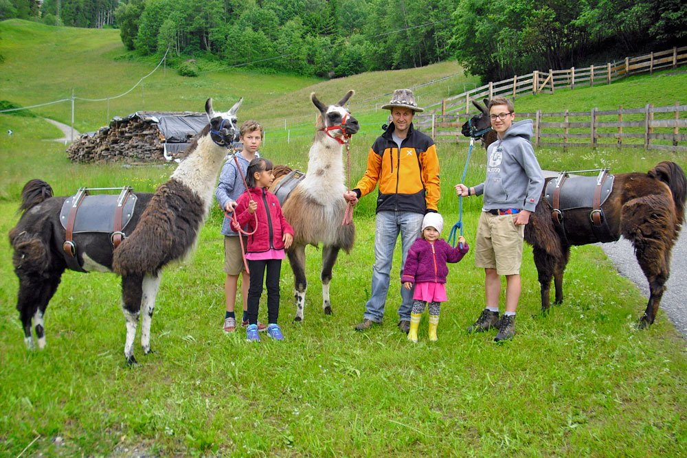Llama Trekking South Tyrol – Hiking in unusual company!